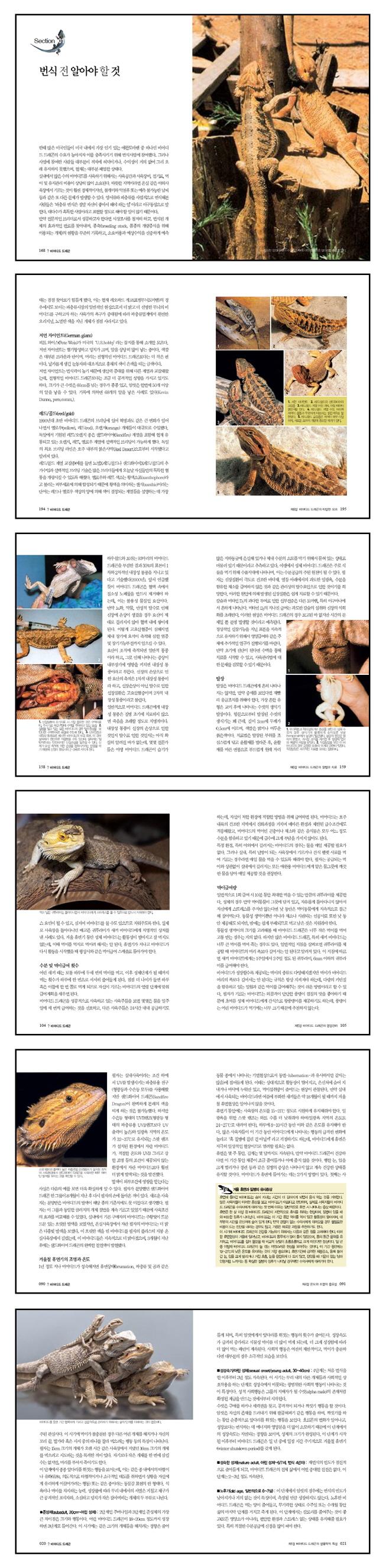 다정한 턱수염 친구 비어디드 드래곤(마니아를 위한 Pet Care 시리즈 9) 도서 상세이미지