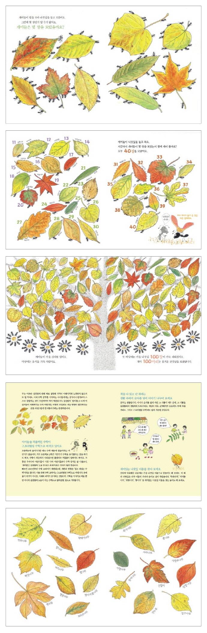 개미 100마리 나뭇잎 100장(자연이 키우는 아이 4)(양장본 HardCover) 도서 상세이미지