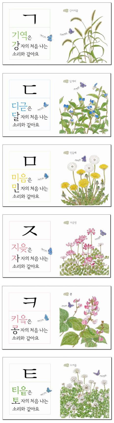 훈민정음 ㄱㄴㄷ(꽃이랑 소리로 배우는)(자연이 키우는 아이 1)(양장본 HardCover) 도서 상세이미지