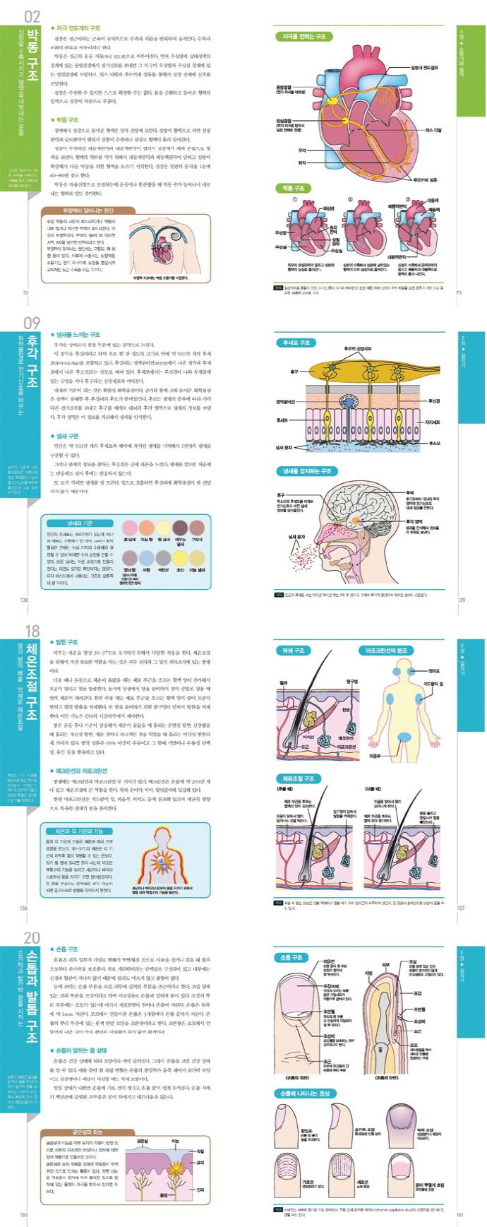 인체 구조 학습 도감(양장본 HardCover) 도서 상세이미지