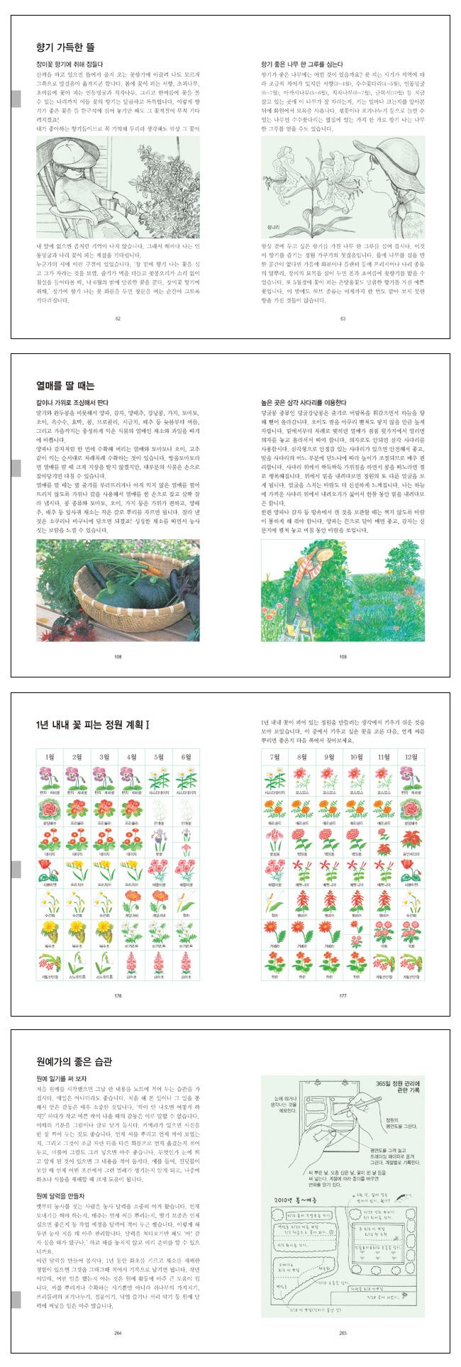 원예도감(체험 학습 도감 시리즈) 도서 상세이미지