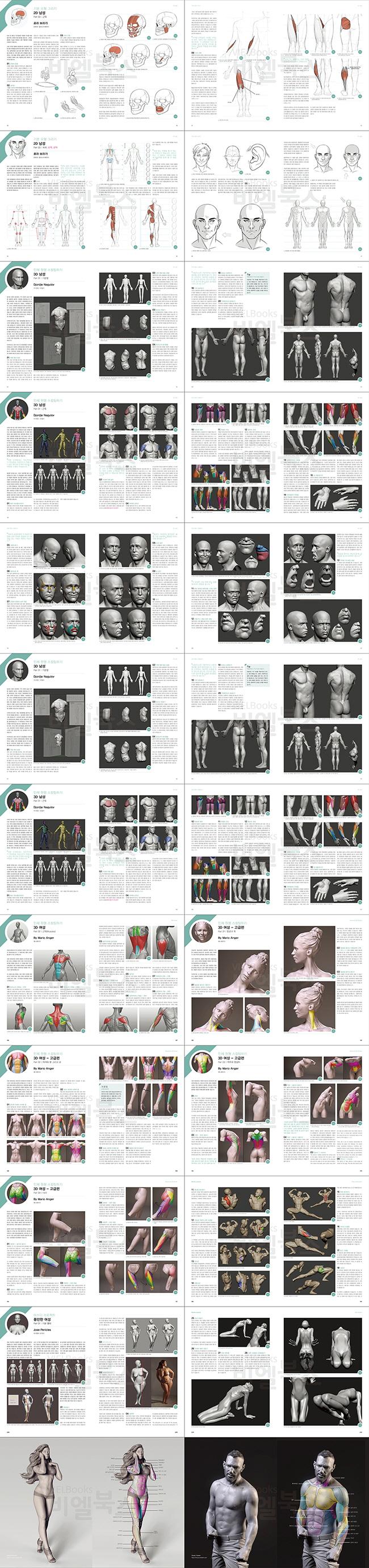 3D 캐릭터모델링의 정석(해부학 구조로 알아보는)(개정판) 도서 상세이미지