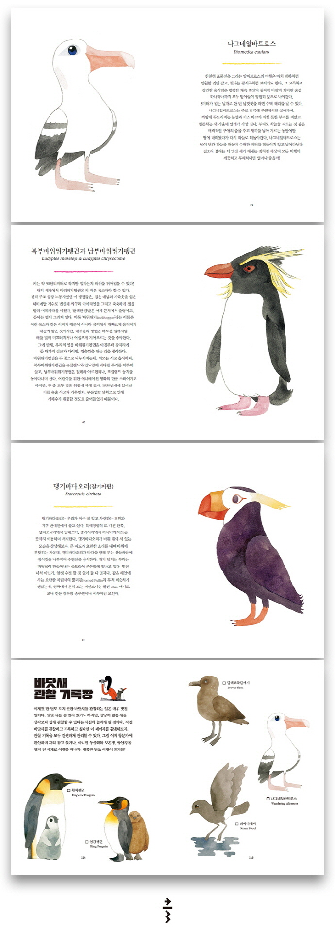 펭귄과 바닷새들(양장본 HardCover) 도서 상세이미지