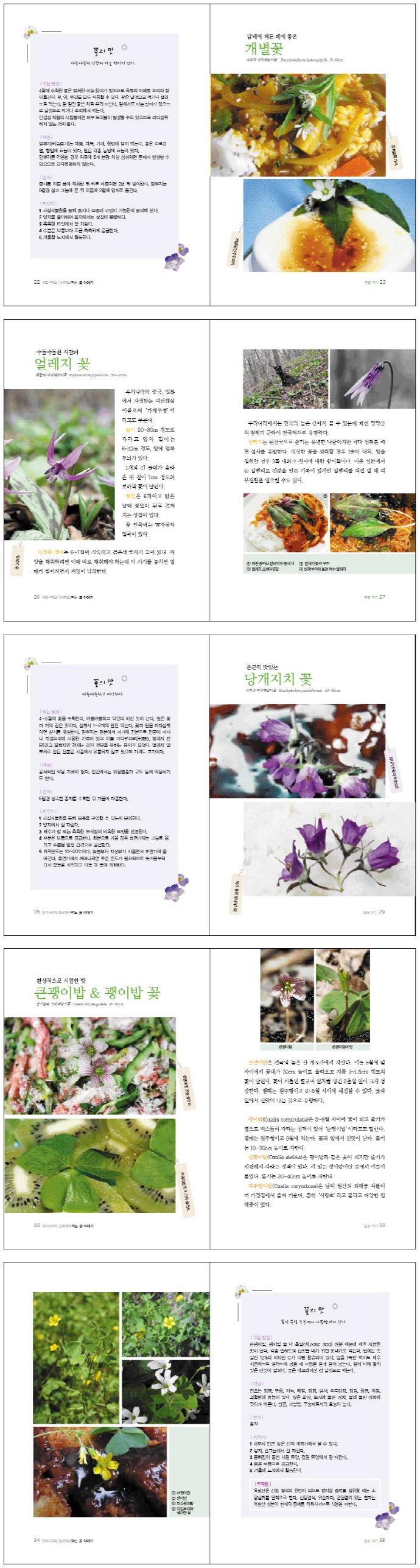 먹는 꽃 이야기(우리나라와 전세계의) 도서 상세이미지