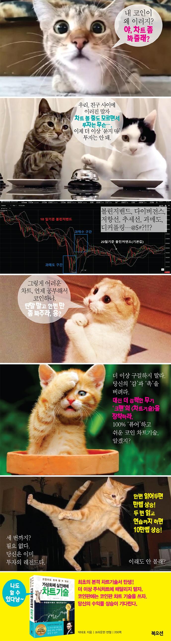가상화폐 실전매매 차트 기술(고양이도 쉽게 할 수 있는) 도서 상세이미지