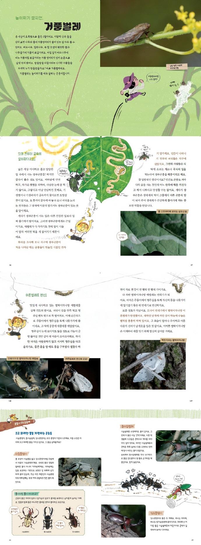 우리 땅 곤충 관찰기. 4: 신기한 능력을 가진 곤충들 도서 상세이미지