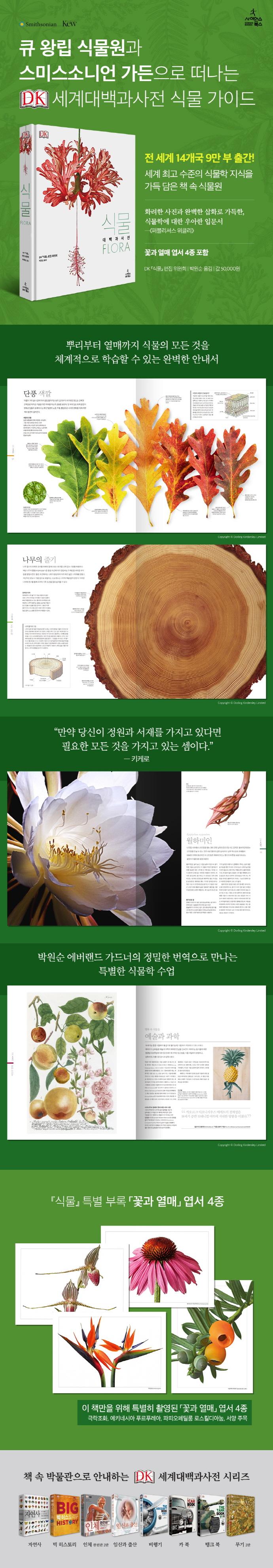 식물(Flora)(DK 대백과사전)(양장본 HardCover) 도서 상세이미지