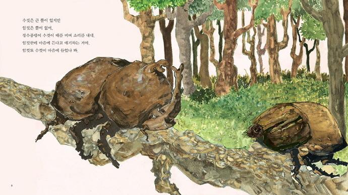 참나무 숲 장수풍뎅이(상상수프 숲동화 16)(양장본 HardCover) 도서 상세이미지