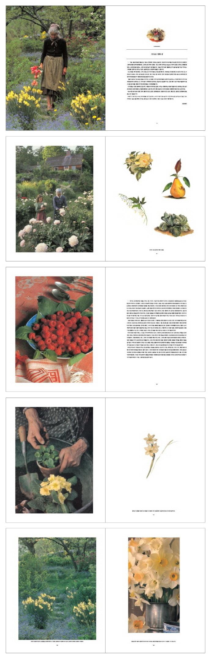 타샤의 정원(타샤 튜더 캐주얼 에디션 2) 도서 상세이미지