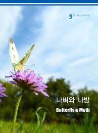 나비와 나방