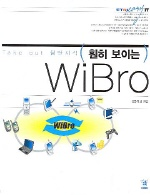 훤히 보이는 WIBRO