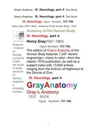 그레이아나토미 해부학의 제9권 4부 신경해부학,신경학. 텍스트책.Gray's Anatomy . IX. Neurology. part 4. Text Book ,by Henry Gray