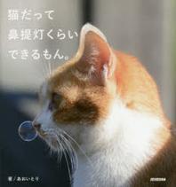猫だって鼻提燈くらいできるもん.