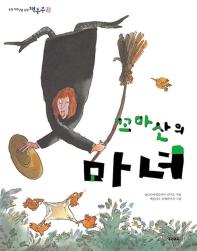꼬마 산의 마녀 (책동무 3)