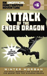 Attack of the Ender Dragon, 6