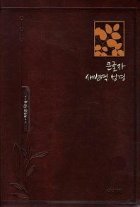 아가페 큰글자 새번역 성경(중단본)(다크브라운)(RN72B)(색인)