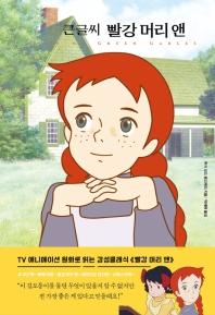 큰글씨 빨강 머리 앤