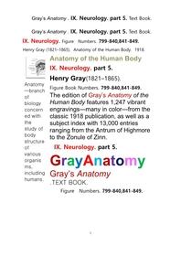 그레이아나토미 해부학의 제9권 5부 신경해부학,신경학. 텍스트책.Gray's Anatomy . IX. Neurology. part 5. Text Book ,by Henry Gray