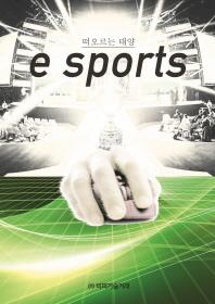 떠오르는 태양 e sports