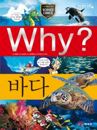 Why? 바다