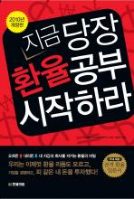 지금 당장 환율공부 시작하라(2010)
