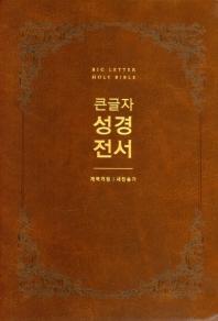 큰글자 성경전서(모카브라운/개역개정/NKR72EWBU/대/합본/색인)