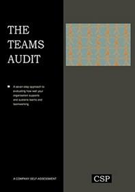 The Teams Audit