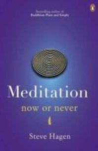 Meditation Now or Never. Steve Hagen