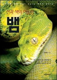 선과 색의 어울림 뱀