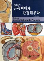 NETTERS 근육 뼈대계 간결해부학(2ND EDITION)