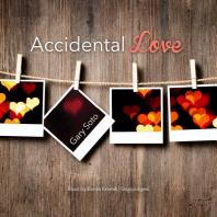 Accidental Love Lib/E
