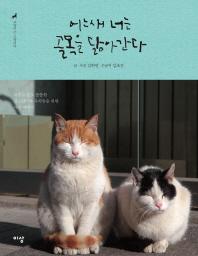 어느새 너는 골목을 닮아간다. (고양이는 고양이다. 2)