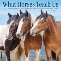 What Horses Teach Us 2022 Wall Calendar