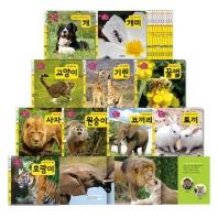생각콩콩 자연동화 10권 세트