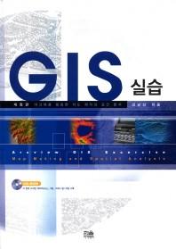 GIS 실습
