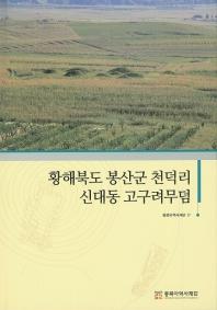 황해북도 봉산군 천덕리 신대동 고구려무덤