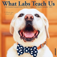 What Labs Teach Us 2022 Wall Calendar (Labrador Retriever Dogs, Dog Breed)
