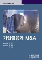 기업금융과 M&A(2009)