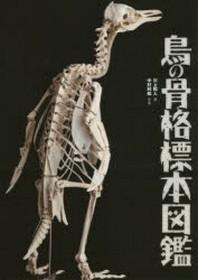 鳥の骨格標本圖鑑