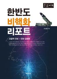 한반도 비핵화 리포트(큰글자책)
