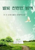 별빛 찬란한 밤에_김기완