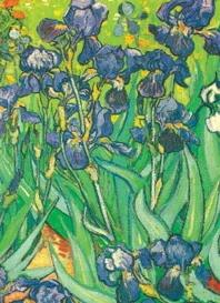 Van Gogh Notebook ( Decorative Notebooks )