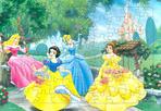디즈니공주들((80조각)