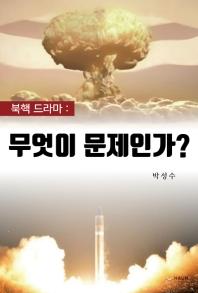 북핵 드라마: 무엇이 문제인가?
