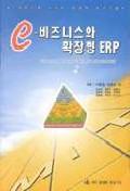 e-비즈니스와 확장형 ERP