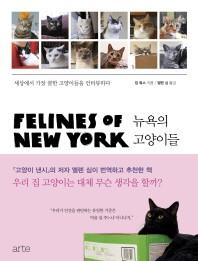 뉴욕의 고양이들