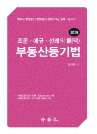 조문ㆍ예규ㆍ선례의 脈(맥) 부동산등기법(2019)