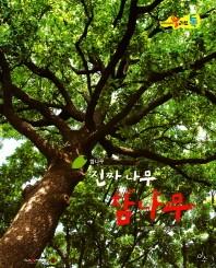 진짜 나무 참나무