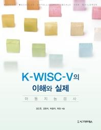 K-WISC-V의 이해와 실제