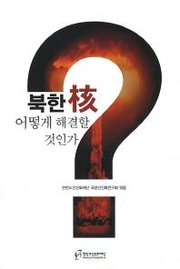 북한 핵 이떻게 해결할 것인가